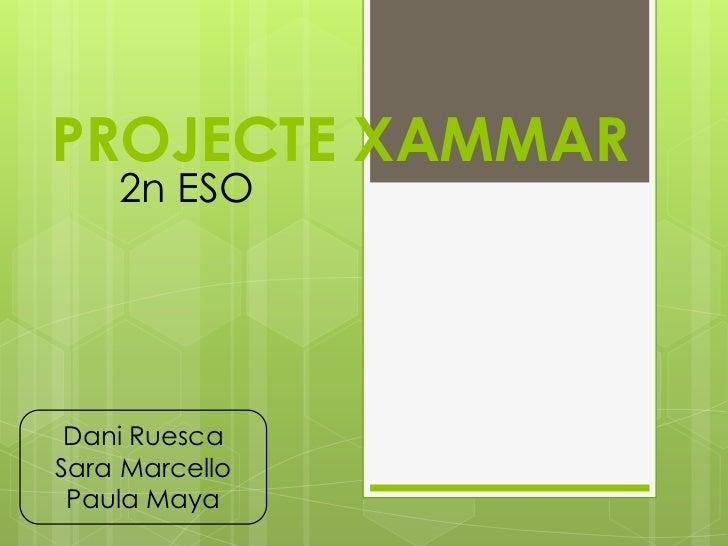 PROJECTE XAMMAR    2n ESO Dani RuescaSara Marcello Paula Maya