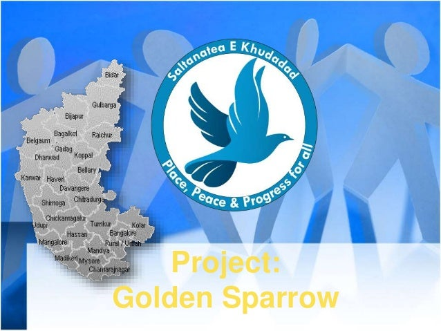 Project: Golden Sparrow