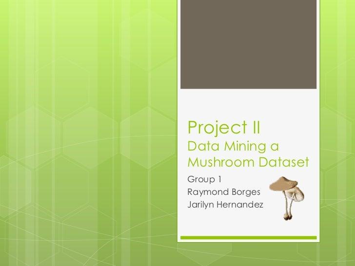 Project IIData Mining aMushroom DatasetGroup 1Raymond BorgesJarilyn Hernandez