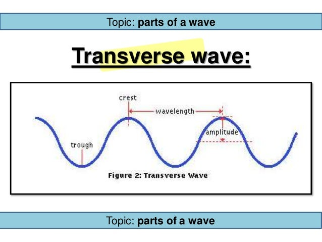 how to find amplitude of a transverse wave