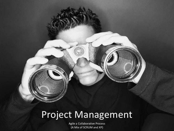Project Management<br />Agile a Collaborative Process<br />(A Mix of SCRUM and XP) <br />