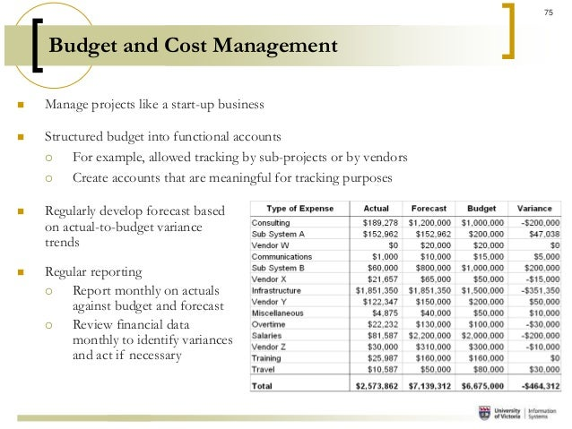 project management budget example