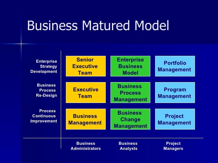 Project Management For Sustainable Business Development
