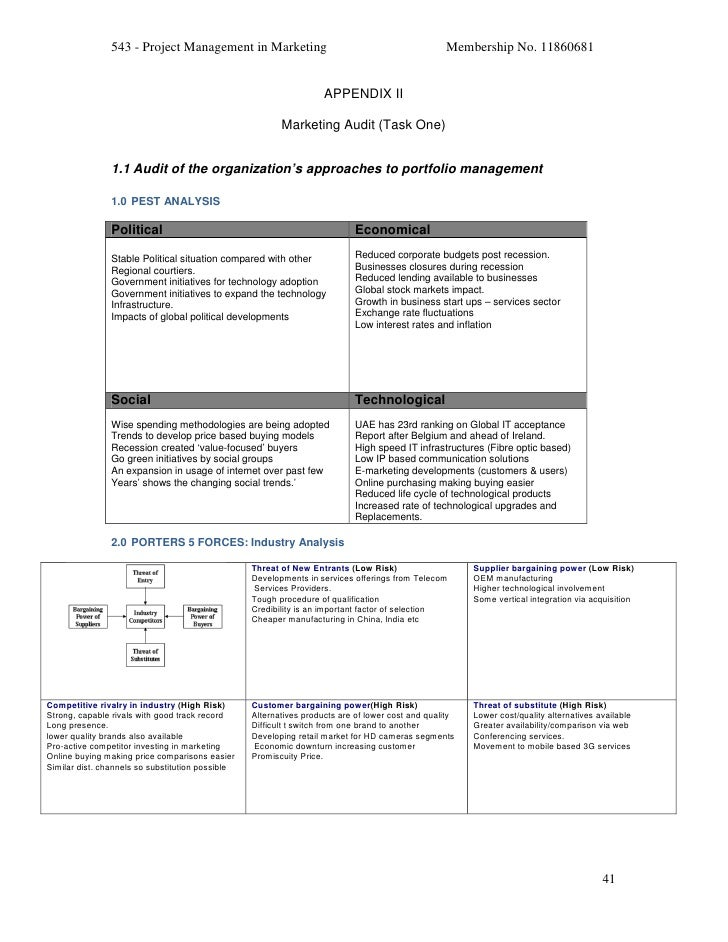 Project management in marketing final report 43 543 project management pronofoot35fo Choice Image