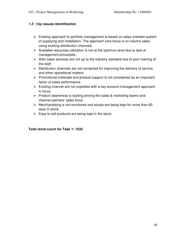 Project management in marketing final report 45 48 543 project management pronofoot35fo Choice Image