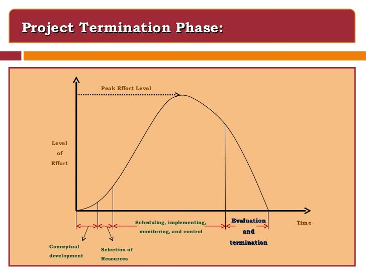 Project implementation control and termination paper