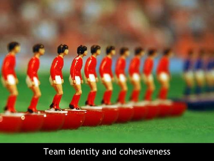 Team identity and cohesiveness<br />