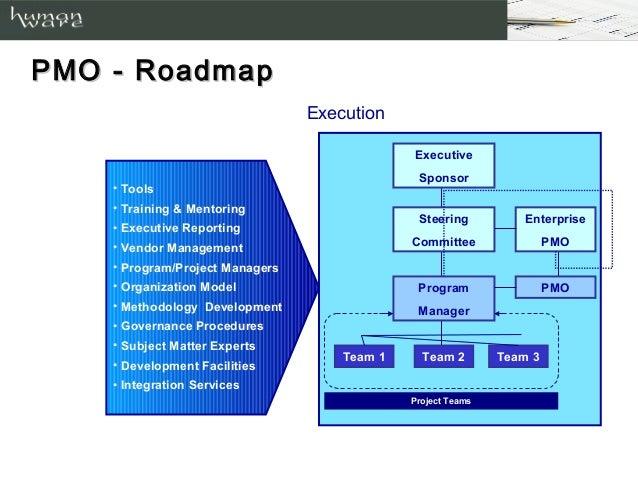 program management approach 14 pmo roadmap