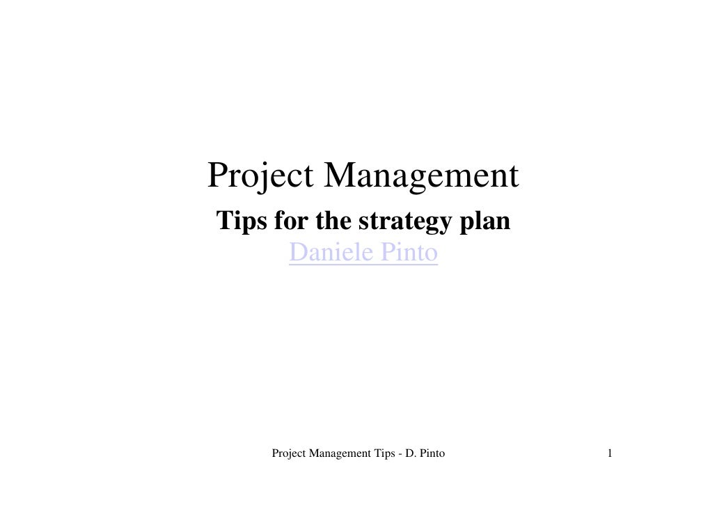 Project Management Tips for the strategy plan       Daniele Pinto         Project Management Tips - D. Pinto   1