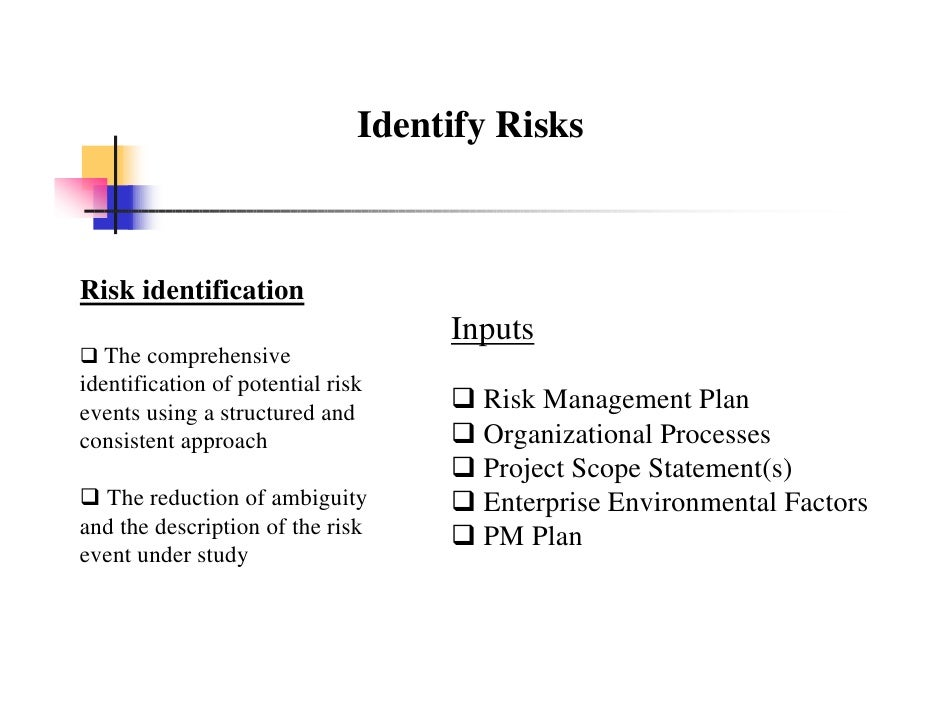 project management risks review
