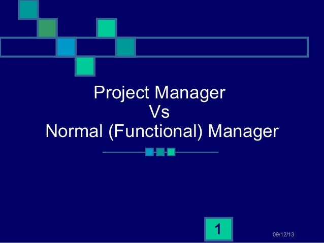 project management vs functional management pdf