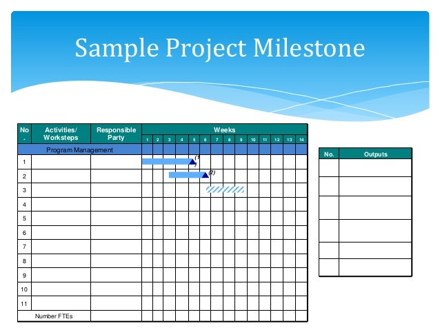 what is project milestone