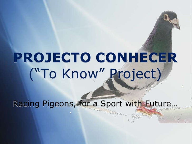 "PROJECTO CONHECER(""To Know"" Project) <br />RacingPigeons, for a SportwithFuture…<br />"