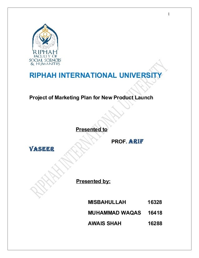 new product project plan