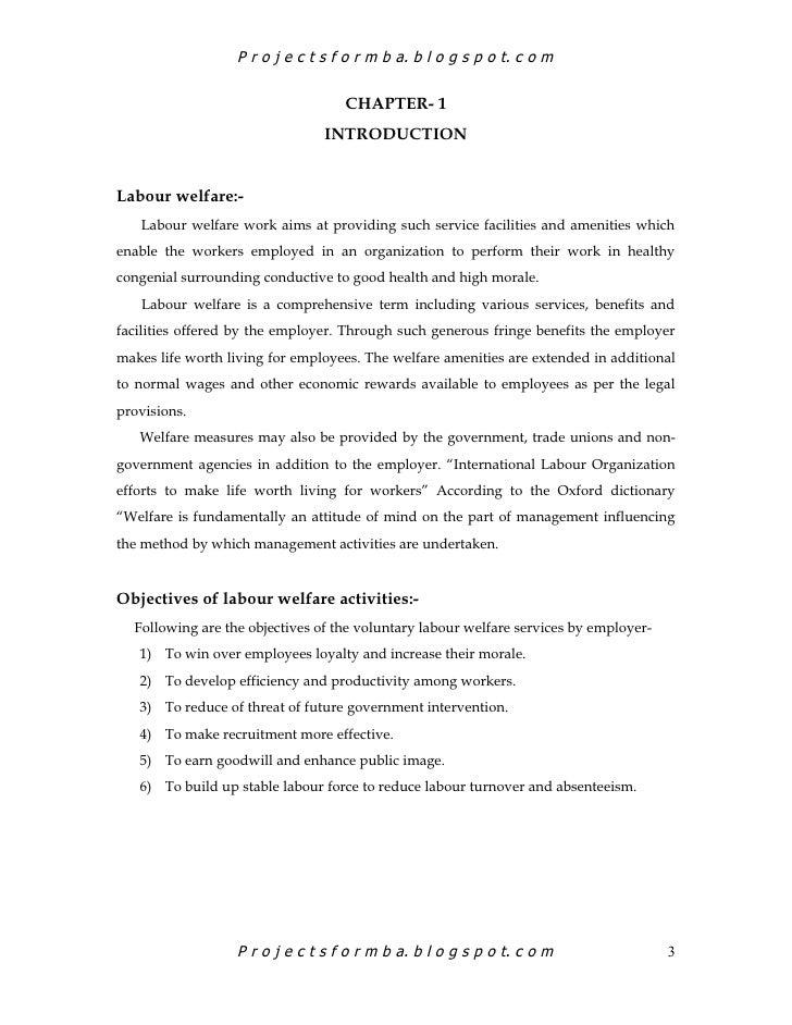 labour welfare facilities project pdf