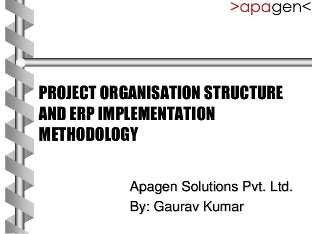 Project Organisation And Erp Implementation Method
