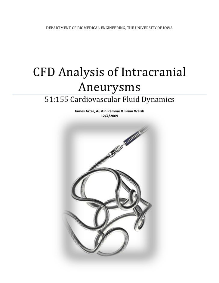 DEPARTMENT OF BIOMEDICAL ENGINEERING, THE UNIVERSITY OF IOWA     CFD Analysis of Intracranial        Aneurysms   51:155 Ca...