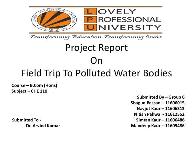 Environmental impact assessment - Wikipedia