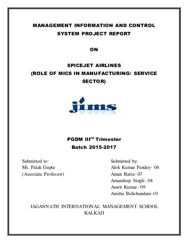 Project report (1)