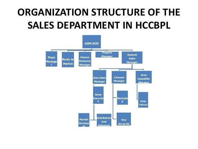 organizational structure of the coca cola company Organizational structure and design of coca cola company group members arif shan elahi hira masood laraib pervaiz mohsin hassan naqvi nauman malik.