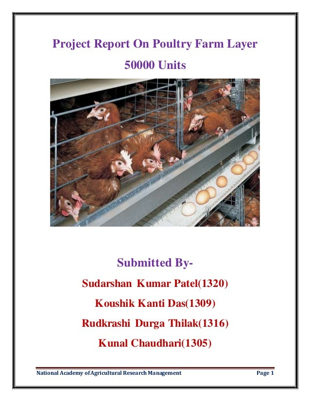 Project report on poultry farm layer