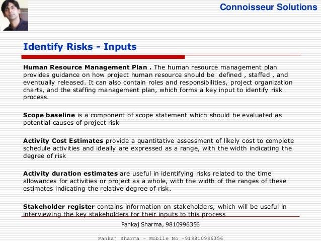 Project Risk Management - PMBOK5