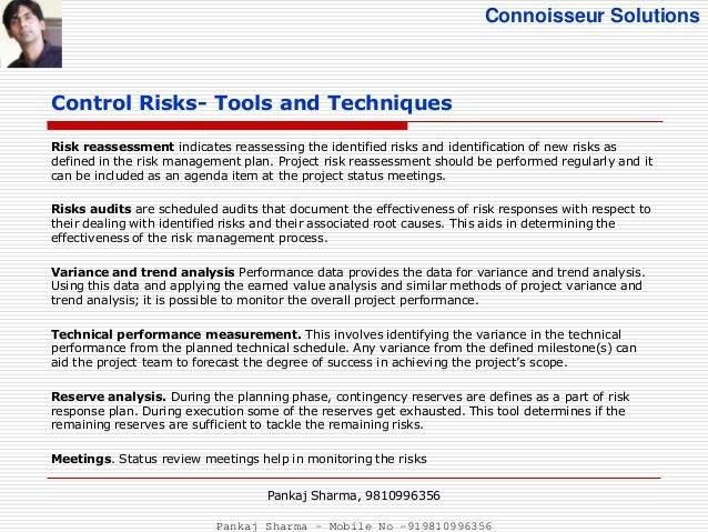 project risk management plan pdf