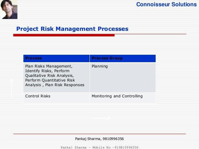 Project Risk Management: Project Risk Management