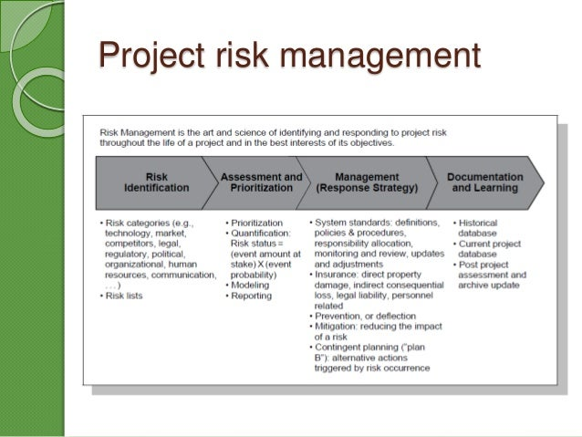 Project Risk Management In New Product Development