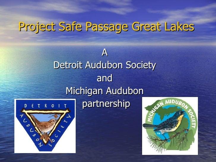 Project Safe Passage Great Lakes A  Detroit Audubon Society  and  Michigan Audubon  partnership