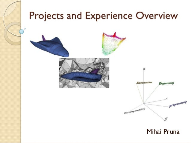 Projects and Experience Overview  Mihai Pruna