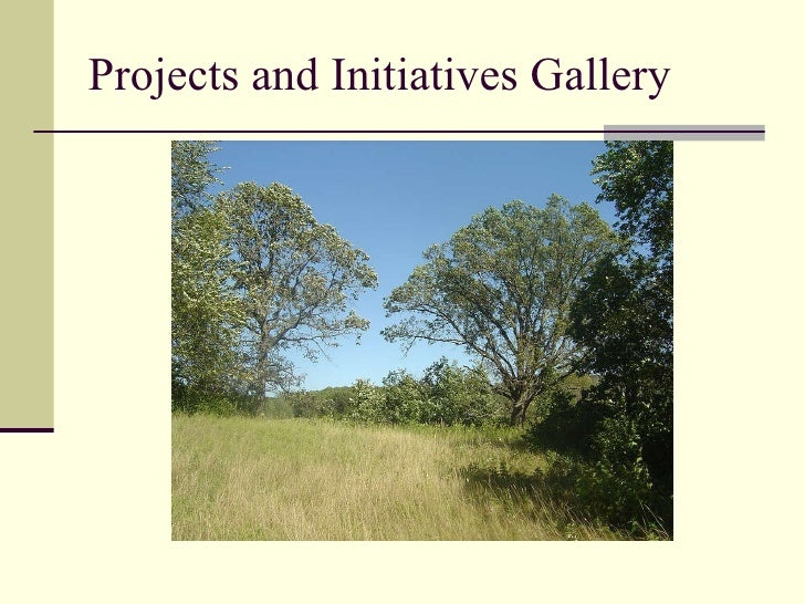 Projects and Initiatives Gallery