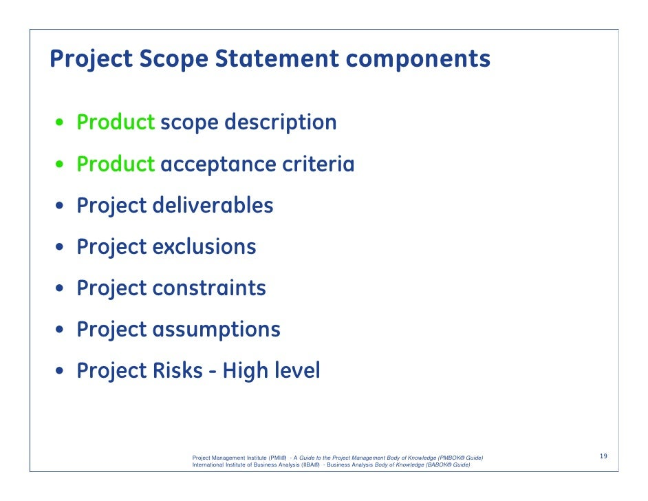 ... 19. Project Scope ...