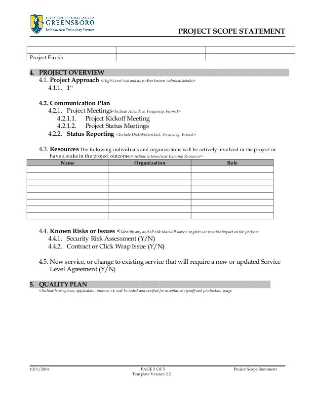 project overview template