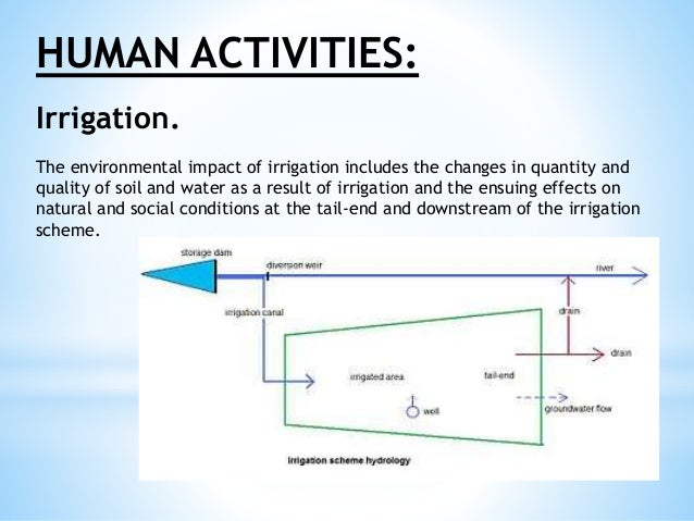 Impact of human activities on natural hazard