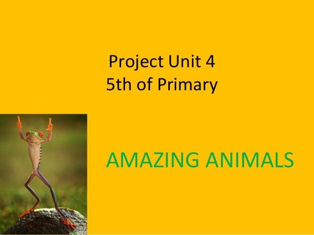Project Unit 45th of PrimaryAMAZING ANIMALS