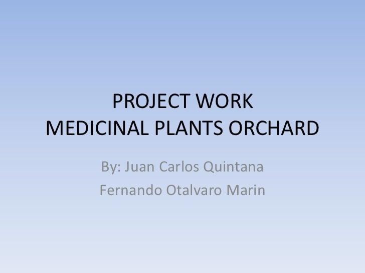 PROJECT WORKMEDICINAL PLANTS ORCHARD<br />By: Juan Carlos Quintana<br />Fernando OtalvaroMarin<br />