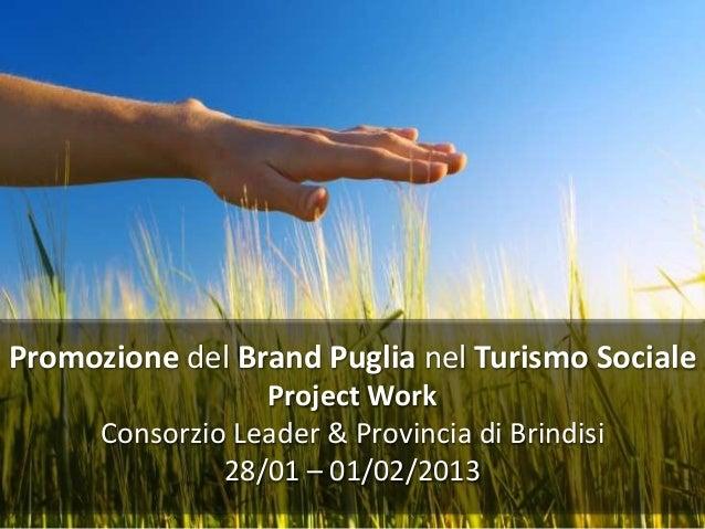 Promozione del Brand Puglia nel Turismo Sociale                  Project Work      Consorzio Leader & Provincia di Brindis...