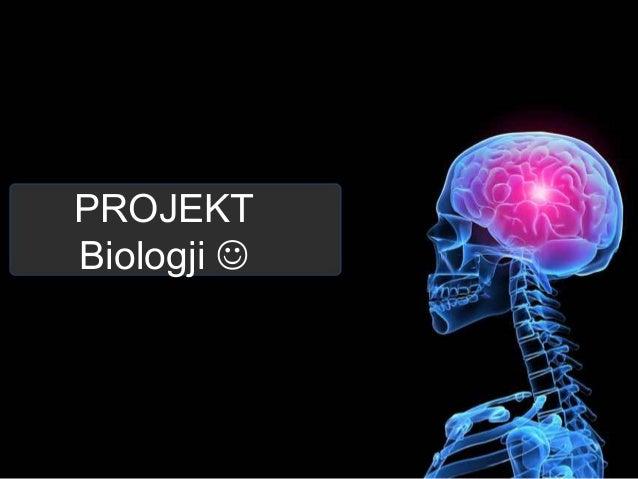 PROJEKT Biologji 
