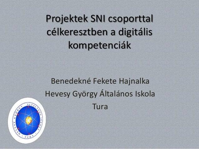 Projektek SNI csoporttalcélkeresztben a digitális     kompetenciák Benedekné Fekete HajnalkaHevesy György Általános Iskola...