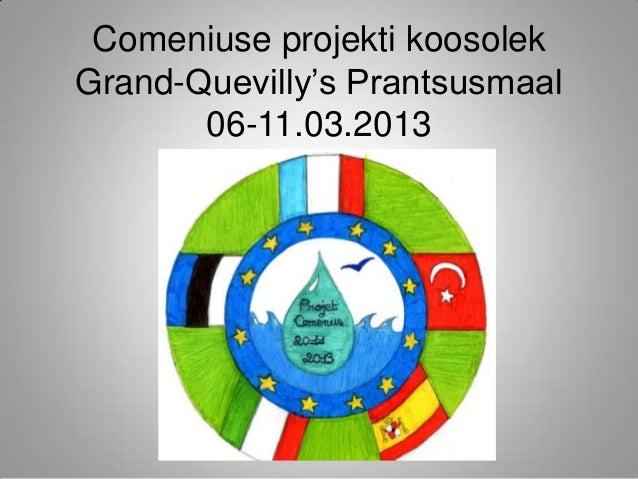 Comeniuse projekti koosolekGrand-Quevilly's Prantsusmaal       06-11.03.2013