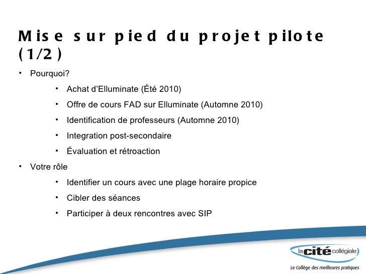 Mise sur pied du projet pilote (1/2) <ul><li>Pourquoi? </li></ul><ul><ul><ul><li>Achat d'Elluminate (Été 2010) </li></ul><...