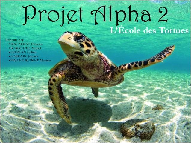 Projet Alpha 2  L'École des Tortues  Présenté par: • BISCARRAT Damien • BURGUETE Andiol • LEHMAN Céline • LORRAIN Jérémie ...