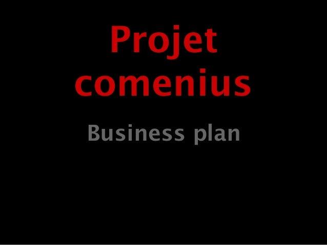 Business plan Projet comenius