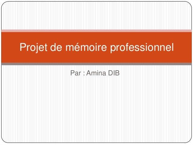 Projet de mémoire professionnel Par : Amina DIB