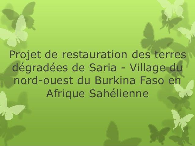 Projet de restauration des terres dégradées de Saria - Village du nord-ouest du Burkina Faso en Afrique Sahélienne
