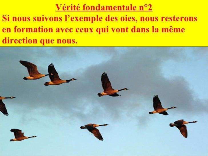 Vérité fondamentale n°2 Si nous suivons l'exemple des oies, nous resterons en formation avec ceux qui vont dans la même di...