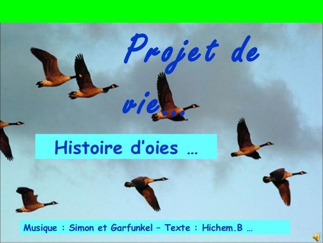 Musique : Simon et Garfunkel – Texte : Hichem.B … Histoire d'oies … Projet de vie…