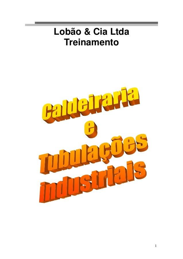 Lobão & Cia Ltda  Treinamento                   1