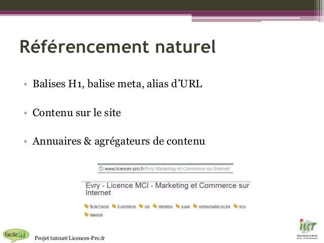 Référencement naturel • Balises H1, balise meta, alias d'URL • Contenu sur le site • Annuaires & agrégateurs de contenu  P...